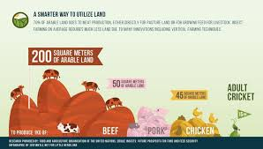 National Geographic Infographic Reveals What The Consumes Replacing Your Ground Beef With Mealworms Reasons Insects Should Be