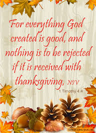 1 timothy 4 4 for everything god created is and nothing is