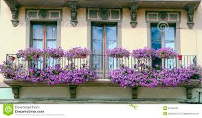 balcony with violet flowers stock photo image 46184227