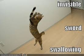 Invisible Cat Memes - image 10414 invisible bike know your meme
