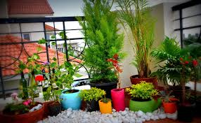 small garden layouts pictures colorful pots bring magical effect to small garden idea striking