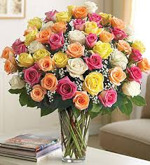 multicolored roses 100 premium stem multicolored roses 1800flowers 100238