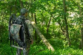 in the woods food plots in the woods are they worth it big treestands