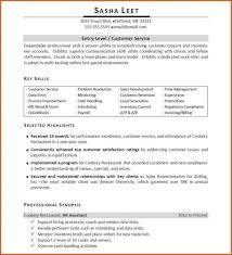 resume computer skills sles skills and qualifications for resume musiccityspiritsandcocktail com