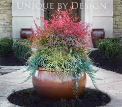 204 best container gardening images on pinterest gardening