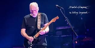 David Gilmour Comfortably Numb David Gilmour Playing U201ccomfortably Numb U201d And Then U201cpurple Rain