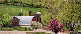 wedding venues wisconsin barn wedding venues wisconsin ashford lomira pioneer creek farm