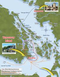 Lake Alan Henry Map Victoria Whale Watching Prince Of Whales Victoria Vancouver Island