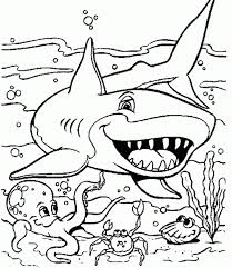 coloring printable coloring pages for kids animals animal of