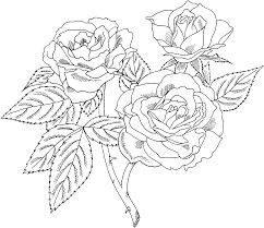 realistic rose flower coloring page flowers new rose coloring