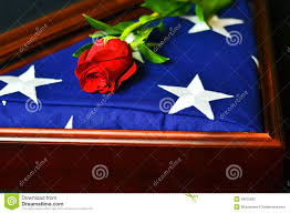 Military Flag Case American Flag With Rose Stock Photo Image Of Display 49975632