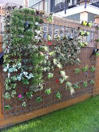 Living Wall With Repurposed Box Spring I Just Happen To Have A