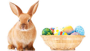 easter bunny origins of the easter bunny and easter eggs