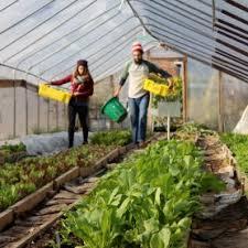 Urban Gardening Philadelphia - urban farm greensgrow farms greensgrow farms
