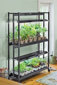 lights to grow herbs indoors indoor indoor grow lights optimizing your plant growth with indoor