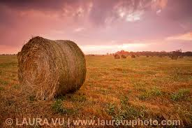 Texas scenery images Images of texas scenery jpg