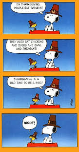 a humorous thanksgiving from flower shop network