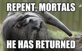 Anteater Meme - images quickmeme anteater