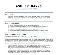 doc templates resume free word document resume templates doc template