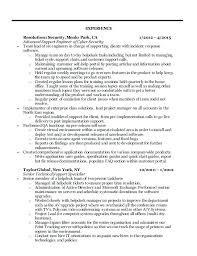 sample resume for information security analyst information