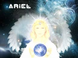 starseed ariel 21 best starseeds images on pinterest spirituality cosmos and