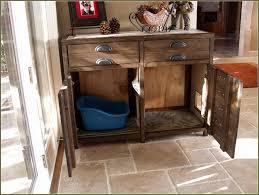 ecoflex jumbo litter loo hidden kitty litter box end table appealing hidden cat litter box furniture elegant diy pict for