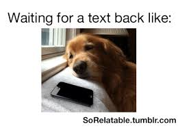 Waiting For Text Meme - 25 best memes about waiting for a text waiting for a text memes