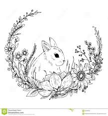 the 25 best rabbit drawing ideas on pinterest rabbit