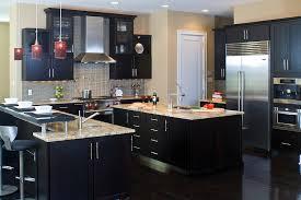 Dark Shaker Kitchen Cabinets Dark Wood Kitchen Cabinets