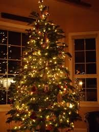 home design homemade outdoor christmas decorations picture 5