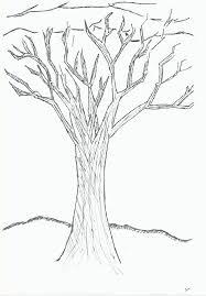 winter tree by one walnut tree on deviantart