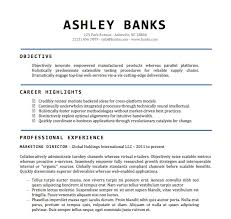 free resume templates in word resume template with ms word file