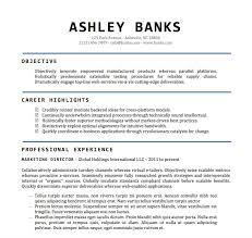 free resume templates in word portfolio resume templates