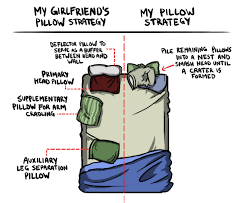 Sharing Bed Meme - pillow strategy for couples the poke