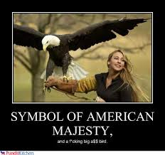 Funny Eagles Meme - that is actually the scientific name for bald eagles randomoverload