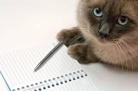 test ingresso veterinaria test veterinaria 2017 cosa portare il giorno della prova