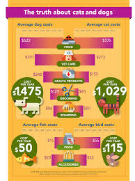 the cost of a pet asic u0027s moneysmart