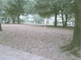 west orange dog park