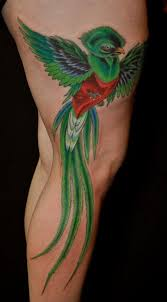 quetzal tattoo google search tattoo pinterest quetzal