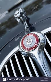 jaguar badge stock photos jaguar badge stock images alamy