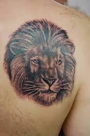 lion tattoo art and designs page 89