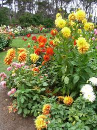 Fort Bragg Botanical Garden Mendocino Coast Botanical Gardens Fort Bragg Ca Would Be An