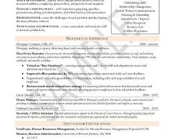 Example Of Resume For Human Resource Position by 100 Functional Resume Template Free Combination Resume Samples