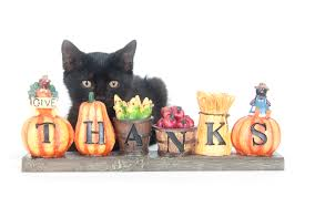 wish you thanksgiving professional pet sitting etc november 2015 newsletterprofessional