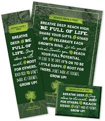 advice from a tree 15th anniversary trio your true nature inc
