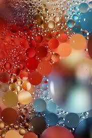 free images drop flower petal red color floating colorful
