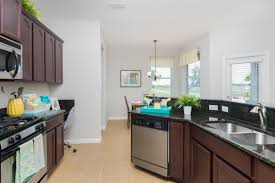 amusing dark cherry kitchen cabinets wall color cute best paint