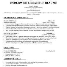 Build Resume Free Online Free Build A Resume Resume Template And Professional Resume