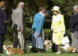 Queen Corgis Queen Against New Dogs In Buckingham Palace In Case She Trips And