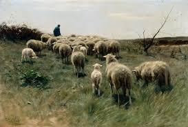 australian shepherd e cavalli shepherd with a flock of sheep detroit institute of arts museum